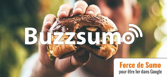 Buzzsumo & YouTUBE pour être classé 1er dans Google !