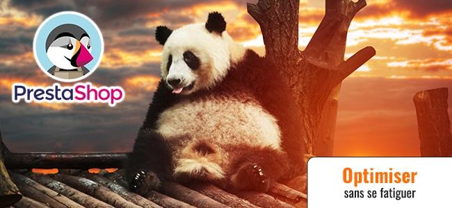 La flemme d'optimiser les Titles Prestashop ? Big Panda arrive ! (ép. 65)